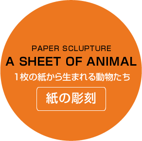 A SHEET OF ANIMAL